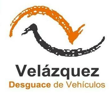 Motor elevalunas delantero izquierdo de Volkswagen Golf G-PB | Desguaces Velazquez