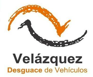 Motor elevalunas delantero izquierdo de Renault Vel satis DG9T702   Desguaces Velazquez